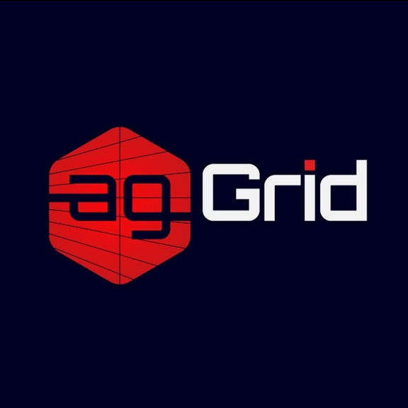 How to use Data Grid in Angular 4 : LearnAngularJS net